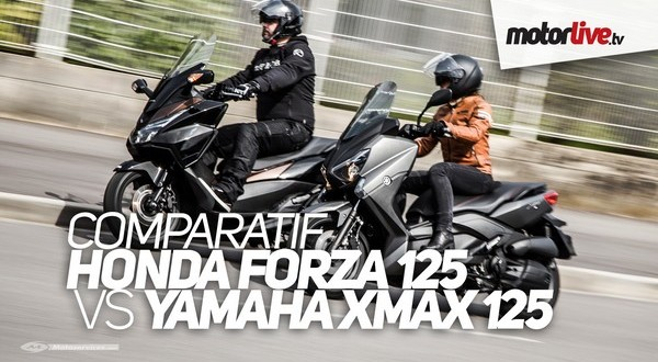 honda forza contre yamaha xmax. Black Bedroom Furniture Sets. Home Design Ideas