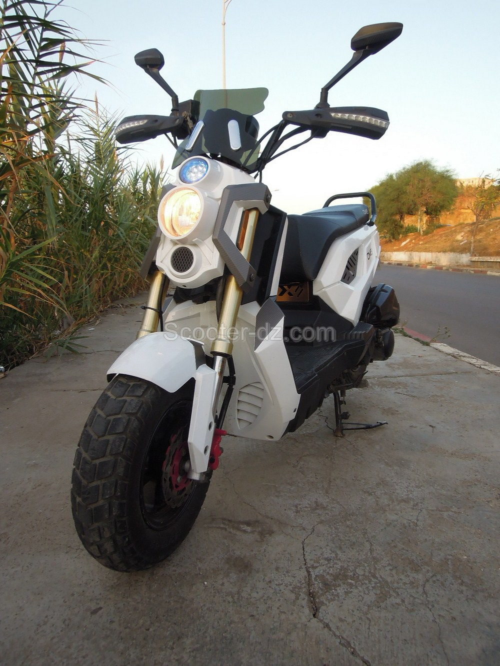 moto scooter omg 2015