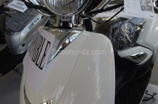 AS Motors Lion 125