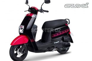VMS Cuxi 110