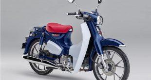 Honda Super Cub C125 2019 : son prix !